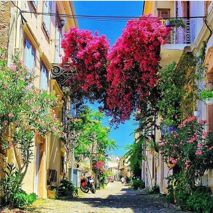 Ayvalık'tan Çiçekli ve Renkli Günaydınlar✌️ Sizlere Ege'nin en güzel yerlerinden biri olan Ayvalık'ta istisna bir dinlence mekanı sunuyoruz Gidin kalın! @gizemlikonakayvalik  www.kucukoteller.com.tr/gizemli-konak Gizemli Konak Otel ☎️ 0536-8263268  2 Kişi Ort. Fiyat: 180₺ ➕Tarihi Yapı  Çocuksuz Daha İyi