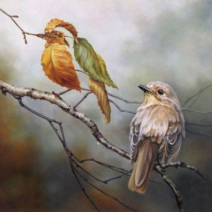 """""""Leafing you in disbeleaf"""" - Optical Illusion Oil Painting by Oleg Shuplyak (Ukraine, b.1967)  Two birds, two very different techniques in creating them  Read more: http://www.dailymail.co.uk/news/article-2088703/Oleg-Shuplyak-More-intricate-oil-paintings-hide-meets-eye.html#ixzz2pWYlSXV3"""