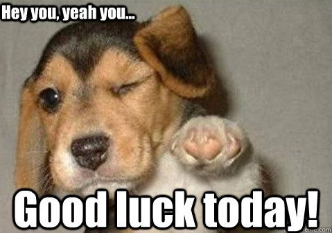 Good luck today! Hey you, yeah you.                                                                                                                                                                                 Mehr