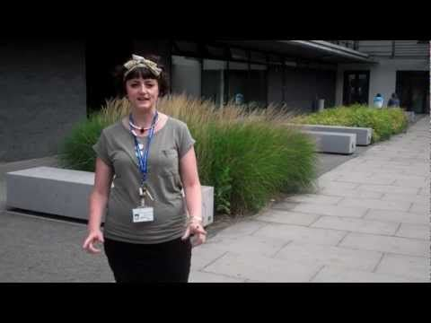 Student Life at City and Islington College