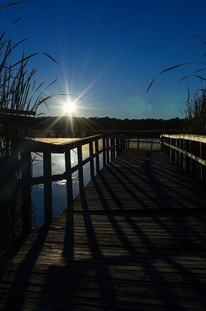 Morning Rise | Flickr - Photo Sharing!