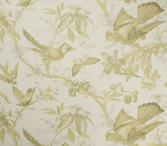 """Paradisiers 7707-6 Chartreuse  Elegant exotic bird and tropical plant print, depicted in fine detail to closely resemble a copper etching and printed on cotton.      Composition: 100% Cotton     Pattern repeat: 36.5 cm / 14.5""""     Width: 137 cm / 54"""""""