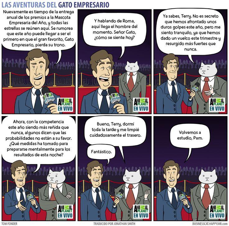 Business Cat - Gala
