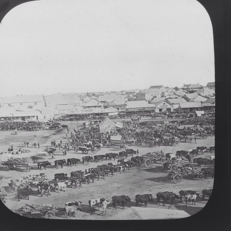 Magic Lantern Slide Vintage Morning Market Kimberley South Africa History