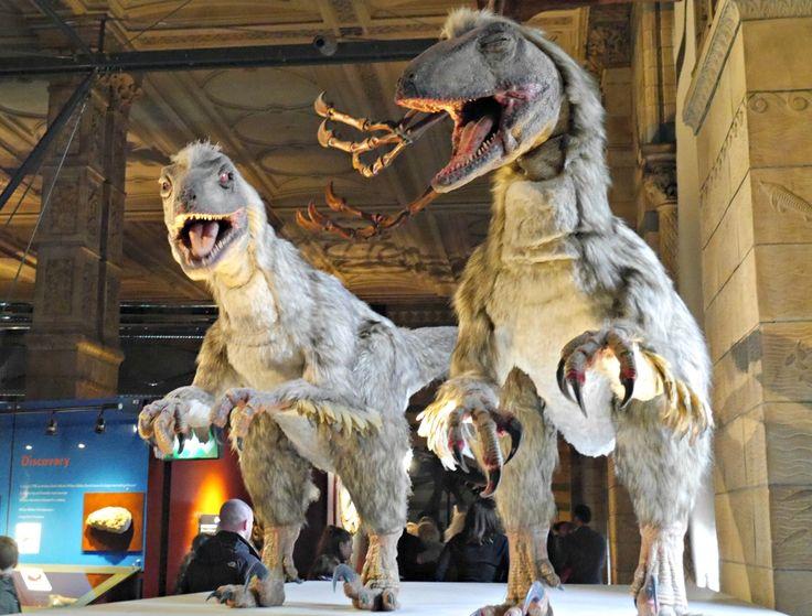 Dinosaurs at the Natural History Museum