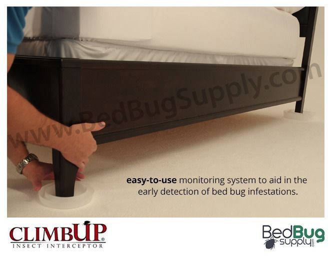 Bed Bug Traps Climbup Bed Bug Traps ... Bed Bug Trap on Pinterest | Bed bug spray, Bed bugs hotels and Bed bug