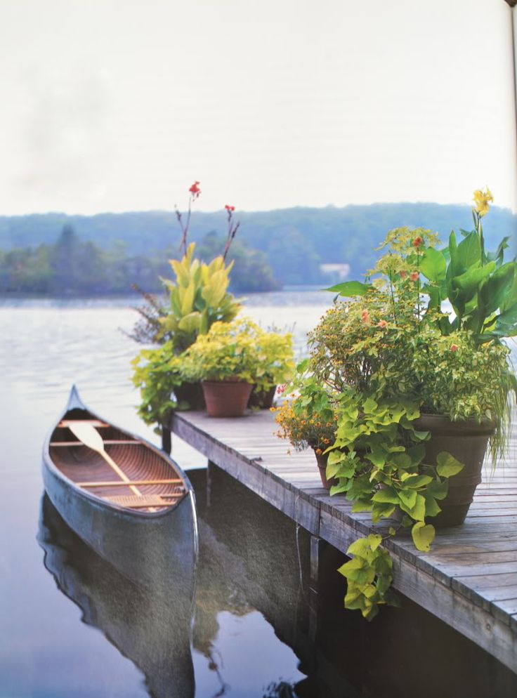 plants on the dock... I want a home with a boat  a dock... and plants  flowers on it