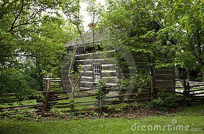 Log cabin in trees