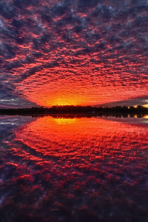 ✯ Firewater - Ballina, NSW, Australia