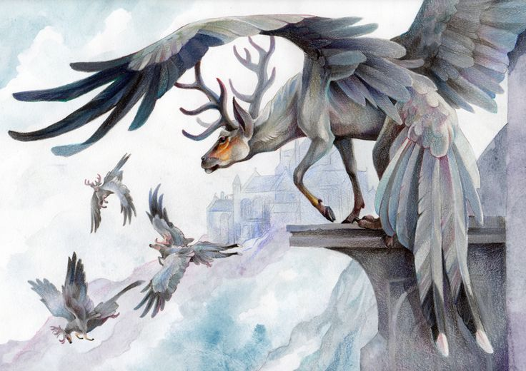 Grace Owen. Illustrator Mythical creature Peryton, a bird/Stag hybrid that flies in flocks.