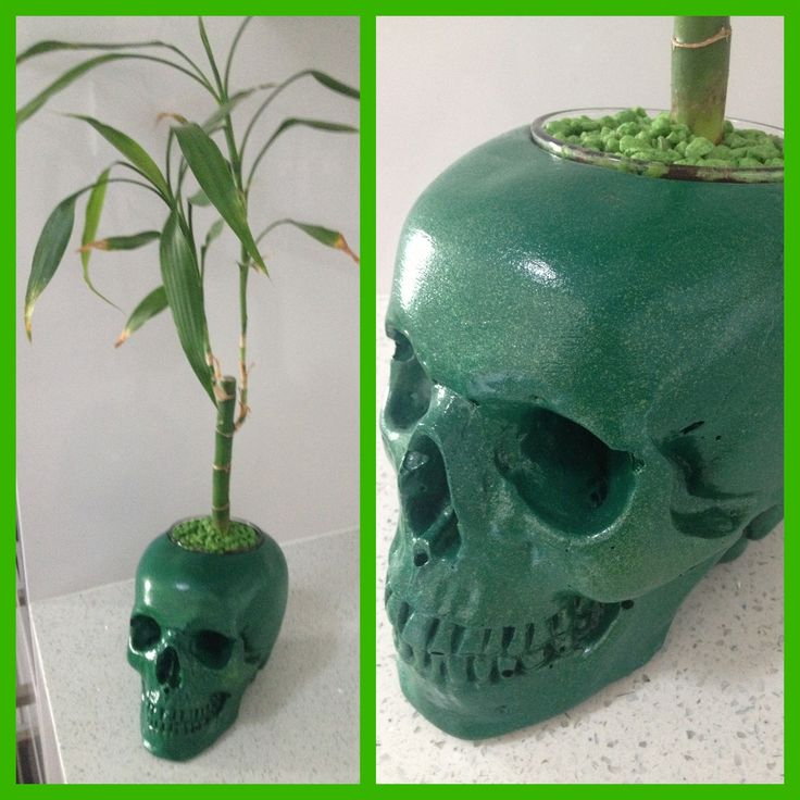 Kreepy Kulture Skull pot, vase