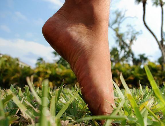 7 rimedi naturali contro i talloni screpolati - Ambiente Bio