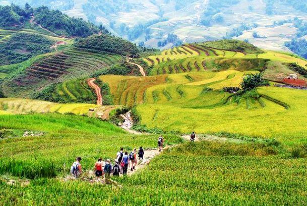 Wie aan Azië denkt, denkt vaak aan uitgebreide rijstvelden, glooiende groene heuvels, vriendelijke mensen en lekker eten. En dat is exact wat Vietnam te bieden heeft. Het langgerekte land in Zuidoost-Azië is dan ook zeker een bezoek waard.