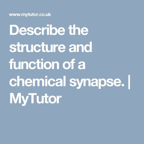 Describe the structure and function of a chemical synapse. | MyTutor