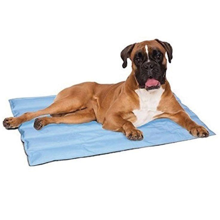 COOL BREEZE MAT #petland # δροσιά #dog #cool # σκύλος