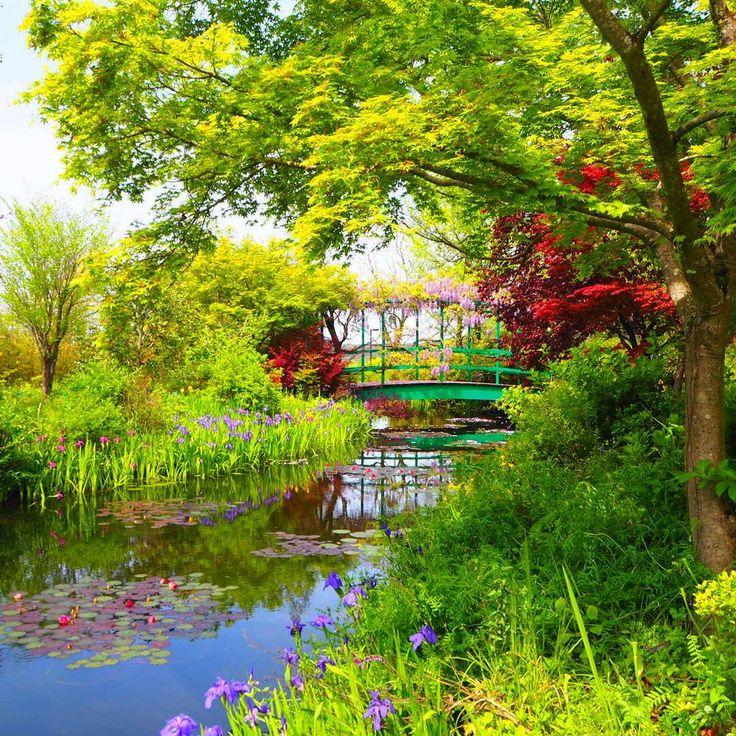 ここ数年ネットと中心に話題になっている岐阜県の「モネの池」。実はこのモネの世界を、岐阜県以外でも見ることができるんです!今回は日本全国の「モネの世界」が見れる秘境スポットを厳選してご紹介。あなたの家の近くにも「モネの絶景」があるかも!