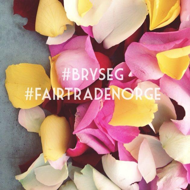 #bryseg Fairtrade roser
