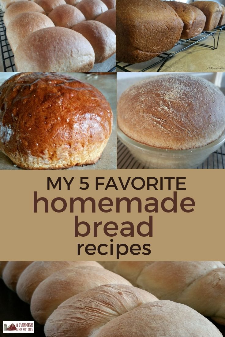 17baacf8e0a Here are my five go-to homemade bread recipes  they taste good