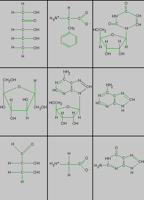 Organic Chemistry Lesson Plan For Middle School