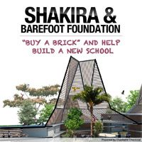 Help Shakira Build a School
