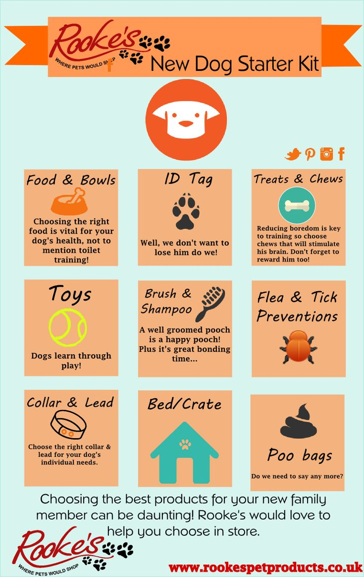 The new dog starter kit! It's tough to remember all things you might need for when you finally bring your new baby home.