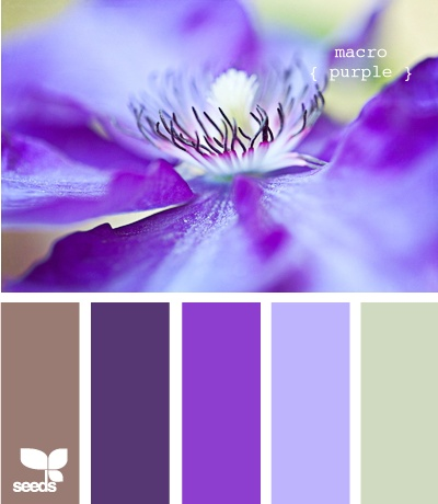 Purple Color Schemes 24 best color combinations - purple & brown images on pinterest