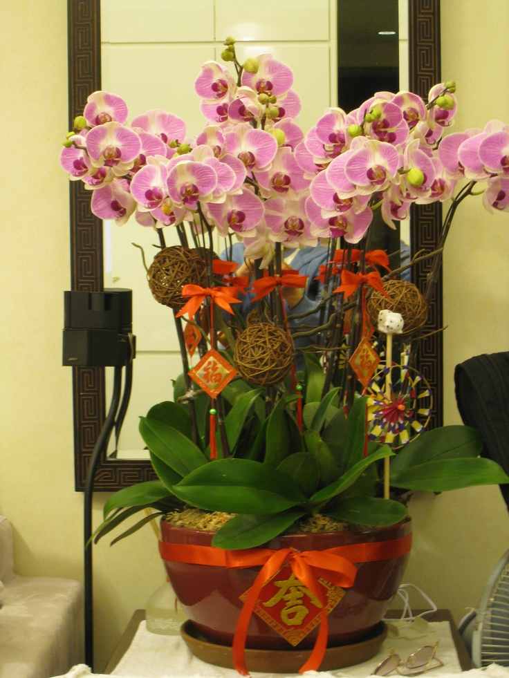 17 Best images about CNY 新年插花 on Pinterest | Floral ...