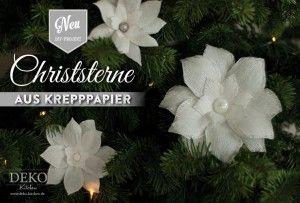 DIY: hübsche Christsterne aus Krepppapier basteln. Das Tutorial mit Vorlage findet Ihr auf: www.deko-kitchen.de