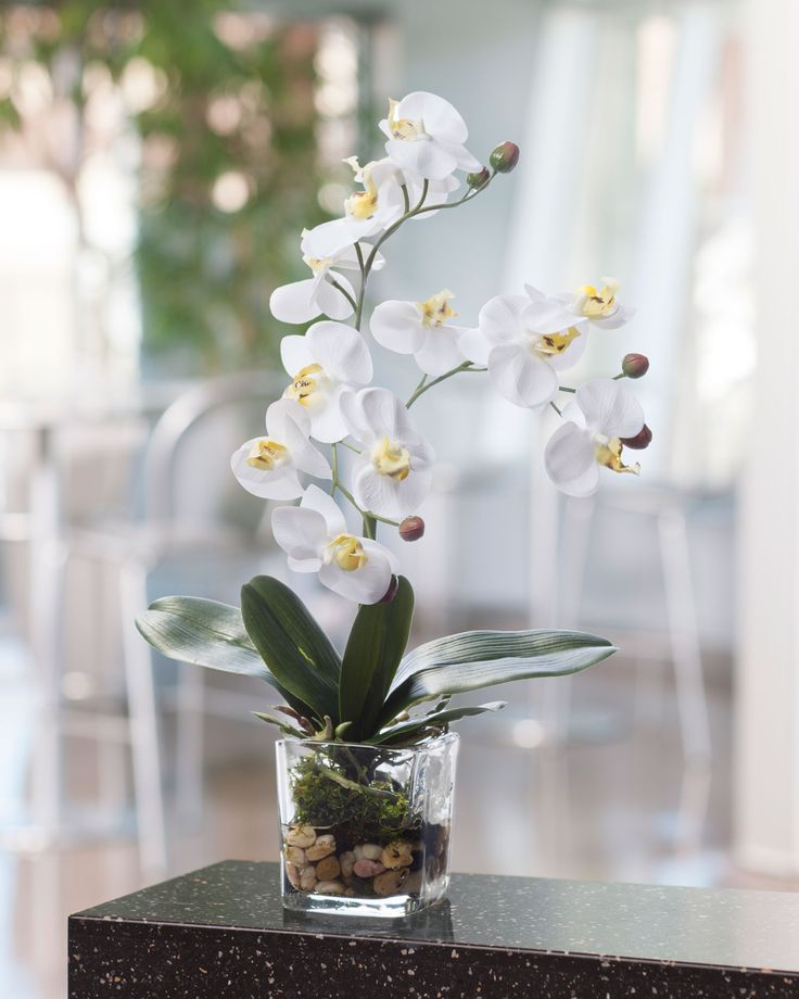 "{$tab:description} Beauty and style, undeniable flair This phalaenopsis orchid blooms from lush green foliage set in river pebbles and moss with our clear acrylic water. It is amazingly lifelike to the eye as well as the touch. This lively artificial orchid is the ideal size for the bathroom vanity, kitchen windowsill, or tucked under a table lamp. Choose from three wonderfully fresh colors. {$tab:DETAILS}  14"" Height x 9"" Width  Heavy Glass Vase - 3"" H x 2.75"" W x 2.75&q..."