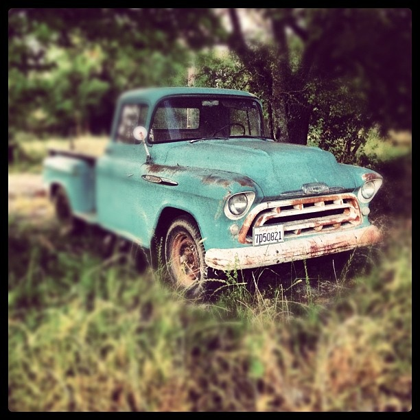 Friends' old Chevy pick up on their farm in Healdsburg, CA.