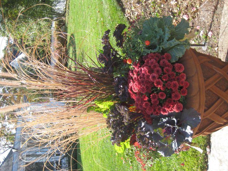 I Love How They Got The Plants To Grow Sideways