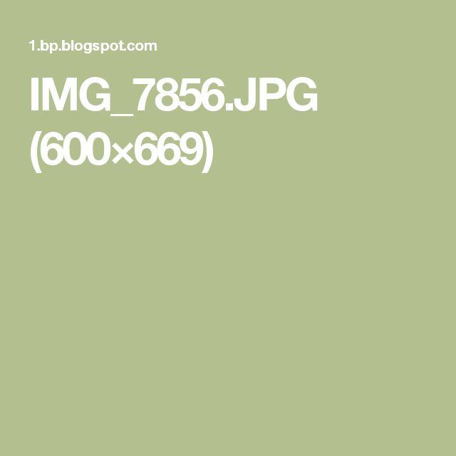 IMG_7856.JPG (600×669)