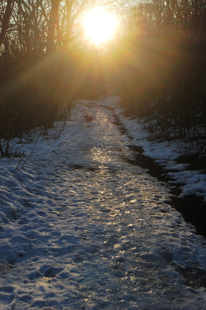 Zubán Diána Téli Gaja-völgy Igaz, hogy tavalyi, de idén még nem volt ilyen szép télies idő sajnos.  Több kép Diától: http://tilltall.tumblr.com/