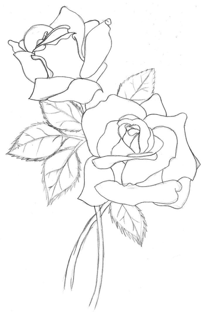 1001 Modeles Et Conseils Pour Apprendre Comment Dessiner Une Rose Dessin Rose Comment Dessiner Une Rose Dessin De Roses