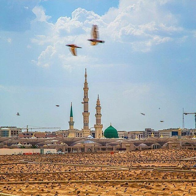 A beautiful view of the Green Dome from the Grave Yard of #Baqi #GreenDome #AlHaqTravel