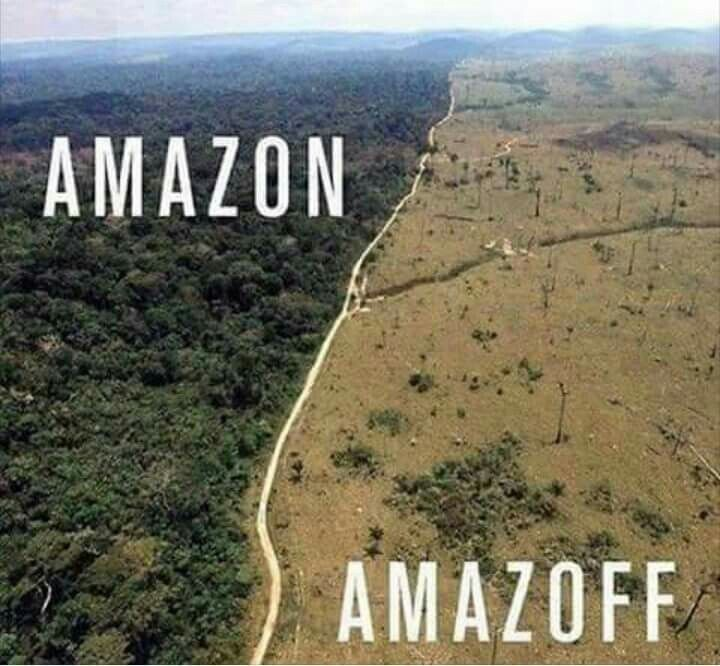 11 best Deforestation before and after ! images on ...
