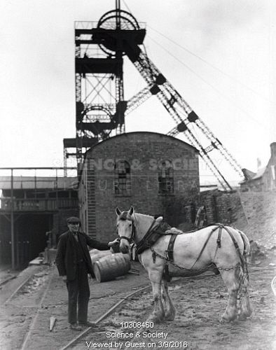 A Welsh miner and a pit-pony, 'Pivot', standing with the colliery wheelhouse behind them, June 1931.