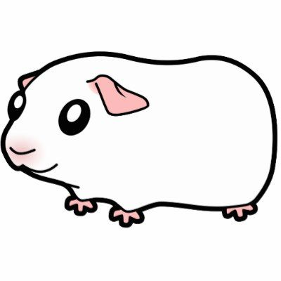 11 best cartoon guinea pigs images on pinterest