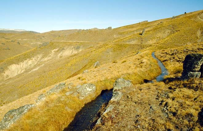 Water races were channels cut across a hillside bringing water from streams to places where gold was mined. This one is on the Old Woman Range in Central Otago. Central Otago's open tussock lands lacked trees, which was problematic for miners – in many places there was little wood for cooking, heating and building.