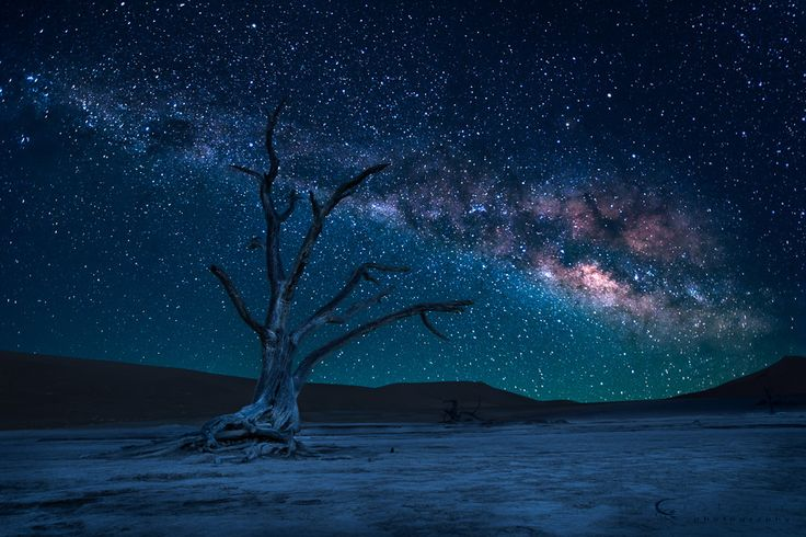 An amazing night in the desert by Thomas Froemmel | Earth Shots