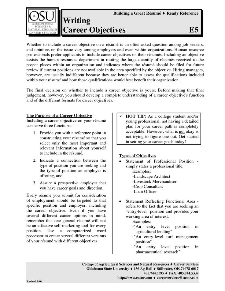 professional resume samples pdf template examples sample free - should you have an objective on your resume