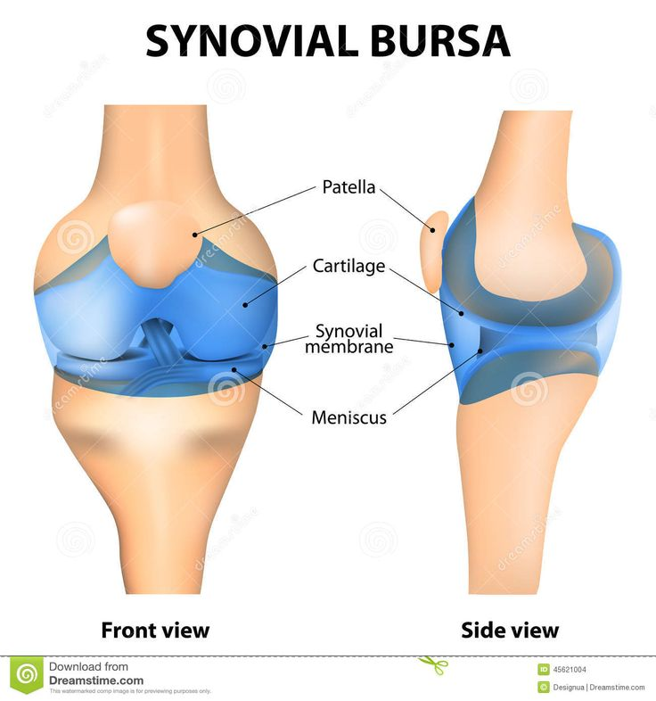 Image result for bursa and synovial fluid