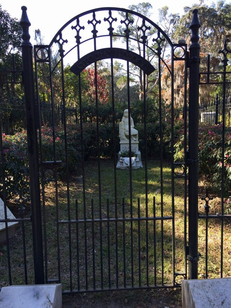 A Glimpse at the Ethereal Beauty of Bonaventure Cemetery