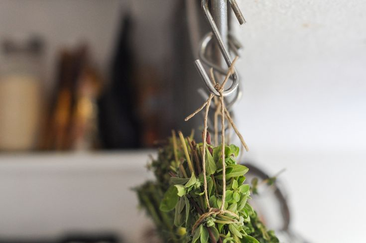 DRYING HERBS   a quick and painless guide to preserving your herbs and using every last leaf.
