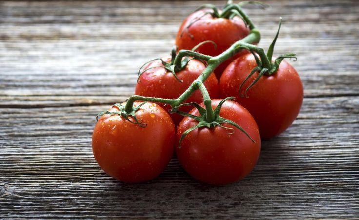 10 Tipps für den Anbau von Tomaten