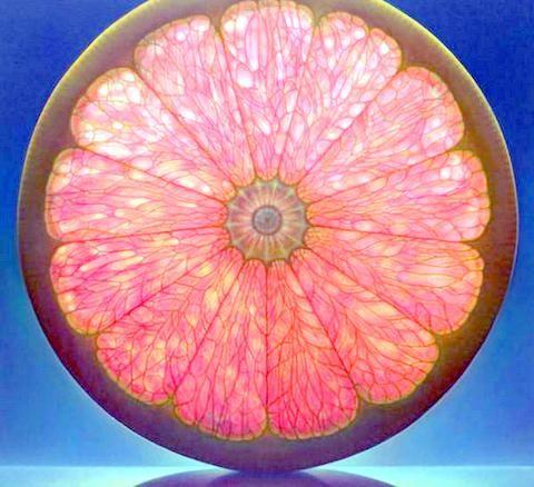 Pink Grapefruit by Dennis Wojtkiewicz