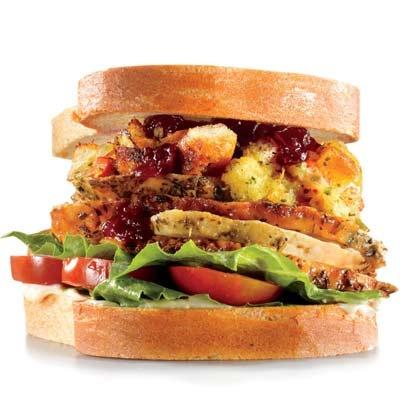 The Gobbler (sliced turkey, romaine, tomato, stuffing, cranberry sauce)