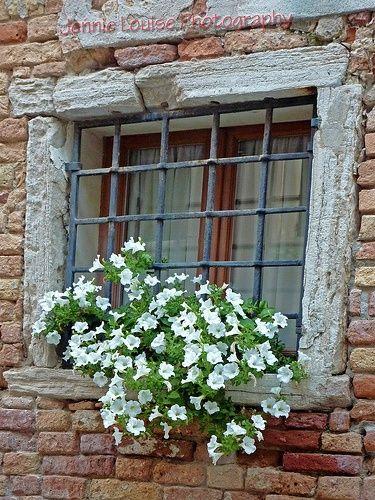 11 mejores imágenes de rejas en pinterest | jardines, rejas y cortinas