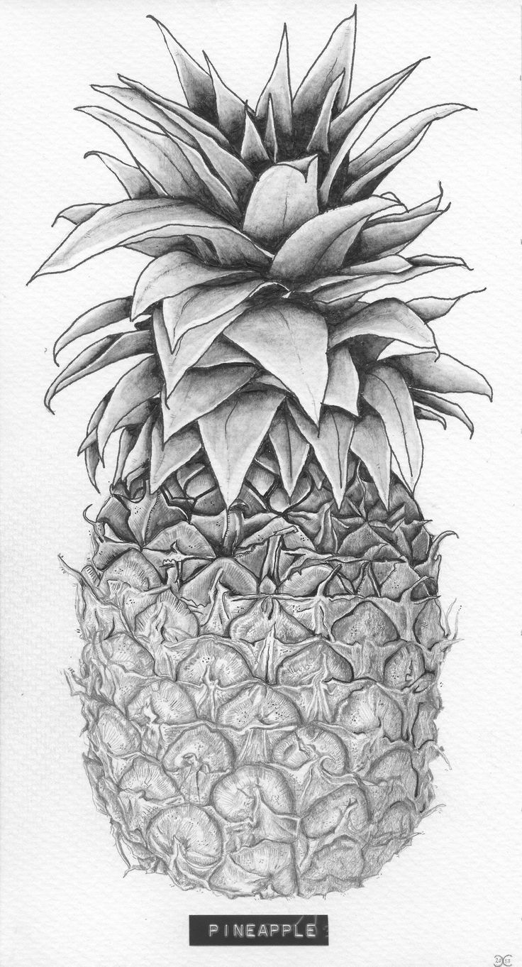 25 best ideas about pineapple drawing on pinterest pineapple print pineapple painting and. Black Bedroom Furniture Sets. Home Design Ideas