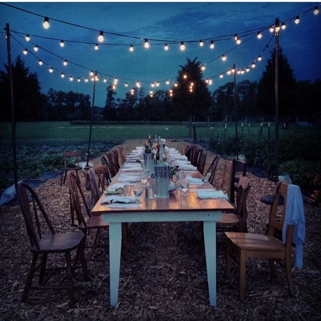 outside dinner with twinkly lights